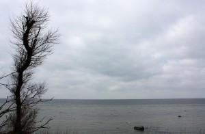 Grey in Grey